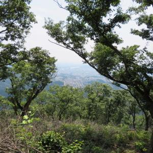 靄が出て山並が霞む 明王山 (380M)   下山 編