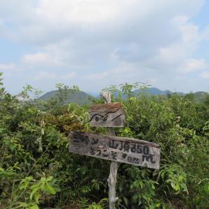 低山散策 三峰山 (245M)    下山 編