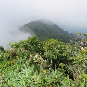 日本二百名山 大日ケ岳 (1,709M)   登頂 編 part 4