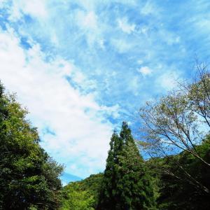 涼しくなった 継鹿尾山 (273M)    登頂 編