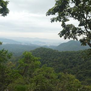 雨模様 明王山 (380M)     猿啄城登頂 編