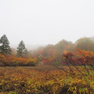 紅葉真っ盛り 籾糠山 (1,744.2M)     カツラ門 編