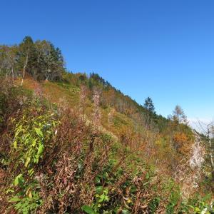 山頂到達 経ヶ岳 (2,296.4M)
