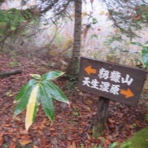 山頂満杯 籾糠山 (1,742.2M)   登頂 編