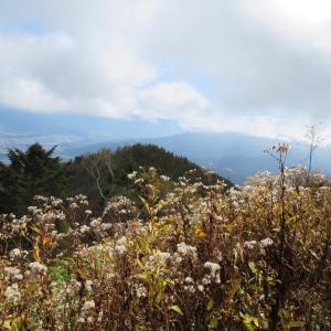 快晴の二百名山   経ヶ岳 (2,296.4M)   下山 編