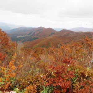 天気急変 金剛銅山 (1,637.8M)    登頂 編
