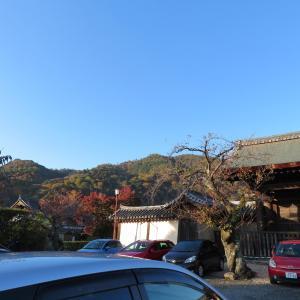 京都トレイル散策 松尾山 (275.6M)    登頂 編