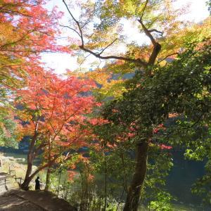 京都トレイル散策 小倉山 (296M)     保津峡 編