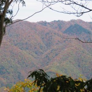 紅葉真っ盛り 蕪山 (1,068.9M)    part 3