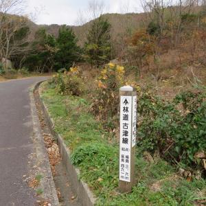 雨降る 百々ケ峰 (418M)   松尾池 編