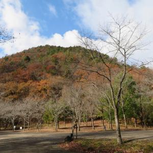 目まぐるしく変わる天気 八木山 (296M)     登頂 編  PART 1
