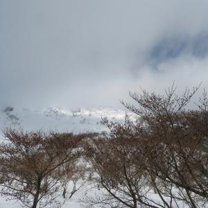 雪タップリ 伊吹山 (1,377.3M)   登頂 編    PART 2