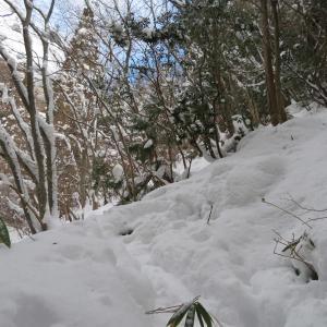 雪の急登を行く 高賀山 (1,224.2M)     御坂峠 編