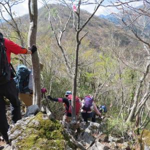 蕾の芍薬 西津汲 (793.3M)     登頂 編