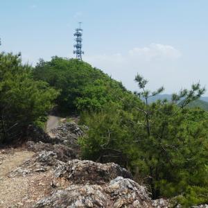 モチツツジ咲く 明王山 (380M)     登頂・下山 編