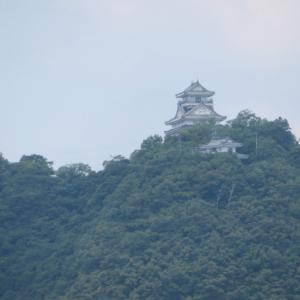 梅雨の晴れ間 金華山 (328.9M)  鷹ノ巣山山頂編