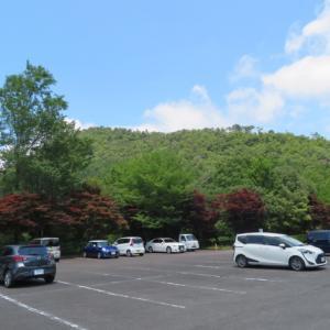 あじさい咲く 高木山 (344M)     みのかも健康の森 編