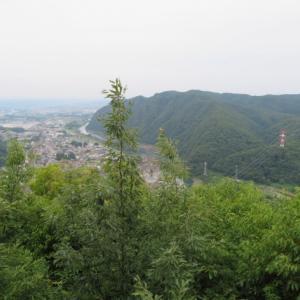 アジサイの花が美しい 明王山 (380M)   下山 編