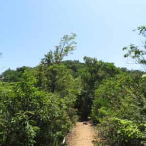 東海自然歩道をゆく 継鹿尾山(273M)   登頂 編 PART 2