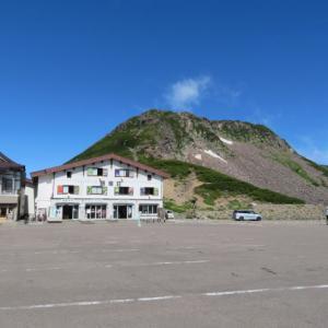 コマクサ咲く 乗鞍岳 (3,025M)    ピックアップ編