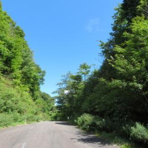 秋らしくなった 瓢ケ岳 (1,162.6M)    登頂・下山編