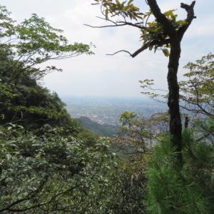 初めて登る登山道 金華山(328.9M)    鷹巣山山頂 編