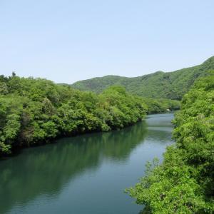★金尾山(要害山)の城跡