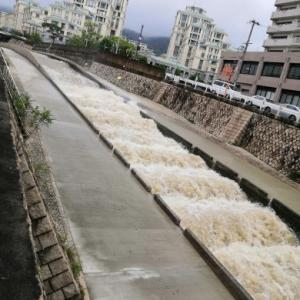 いつもは穏やかな #住吉川 、勢いのある #濁流 へ…