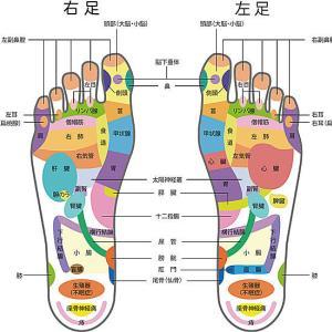 だそうです...:「足裏には全身の #反射区 が集まっていて、60~70もの #ツボ ( #反射区 )が!」 #足つぼ #マッサージ #東洋医学