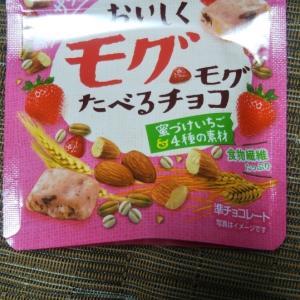 おいしくモグモグたべるチョコ 蜜づけいちご&4種の素材