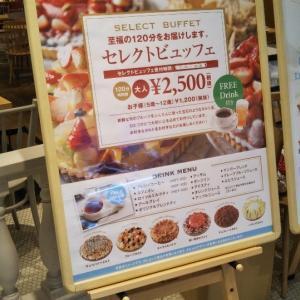 デリス グランツリー武蔵小杉店 セレクトビュッフェ