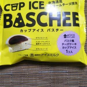 カップアイスバスチー バスク風チーズケーキカップアイス