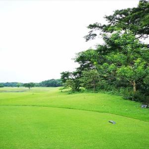 ゴルフ歴30年