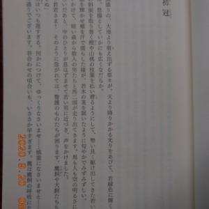 #4374 情緒の同調について:高樹のぶ子著『小説伊勢物語 業平』 Sep. 21, 2020