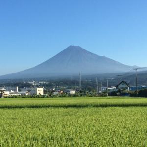 8月の富士山