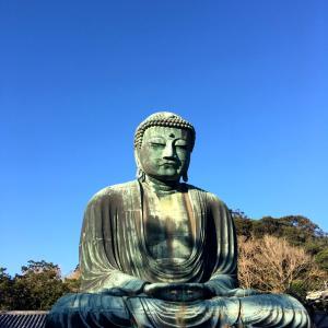秋のお出掛け☆成人式打ち合わせと鎌倉の大仏様いろいろ。