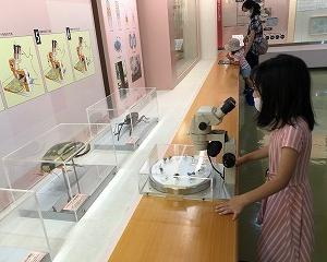 倉敷市立自然史博物館へ