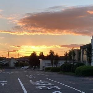 日の出と彼岸花 朝の散歩