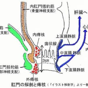 痔疾の鍼灸治療(改定版)