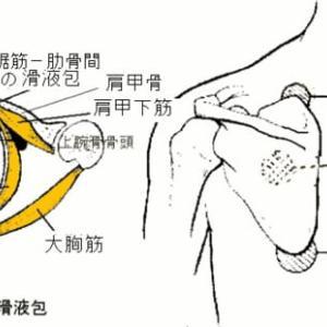 弾発肩甲骨症候群、肩峰下滑液包炎、指関節軋轢時の関節音鳴りの対処法