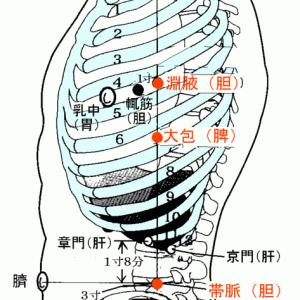 現代鍼灸でのツボの効かせかた⑤腹部編 ver.1.1