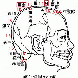 現代鍼灸でのツボの効かせかた⑥頭部編