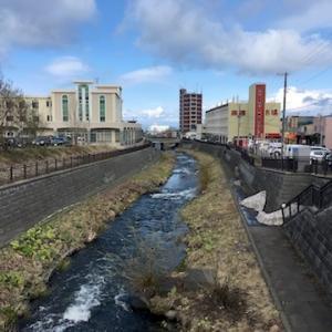 ニュースより/2020年の勝納川の鯉のぼりは中止