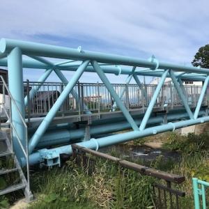 勝納川水管橋(水道橋)が渡れなくなっていた。というか通行用の板の橋がなくなっていた