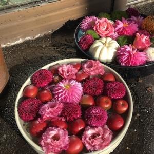 松ヶ枝町の花屋さん「小樽フラワー」で終了した住吉神社の花手水の花たちを浮かべてました