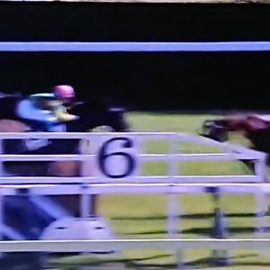 ◎馬体重+48キロで愛馬がV!ケイココサージュ障害で初勝利