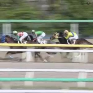 ◎愛馬メトカルフィア、船橋で初勝利!