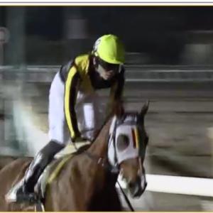 ◎愛馬トゥモローアンセム、船橋で12勝目飾る