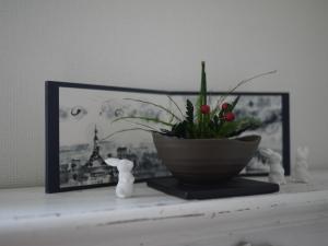 毎月の花教室について