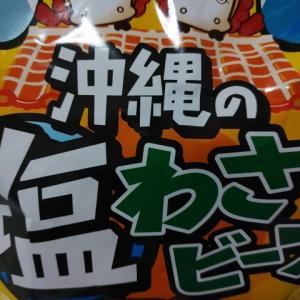 沖縄の塩わさビーフ